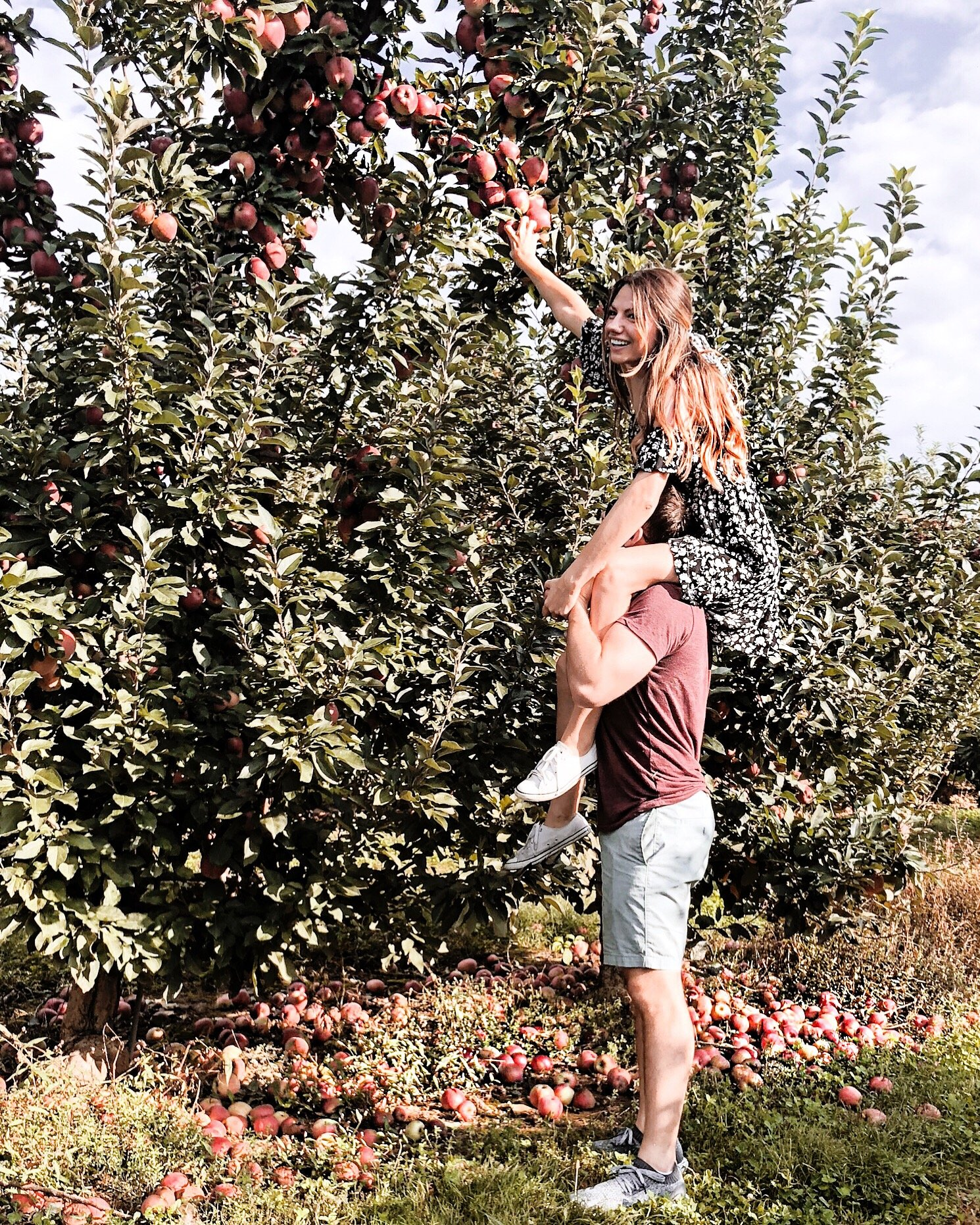 A man hoists a woman on his shoulders to pick apples off a tree.