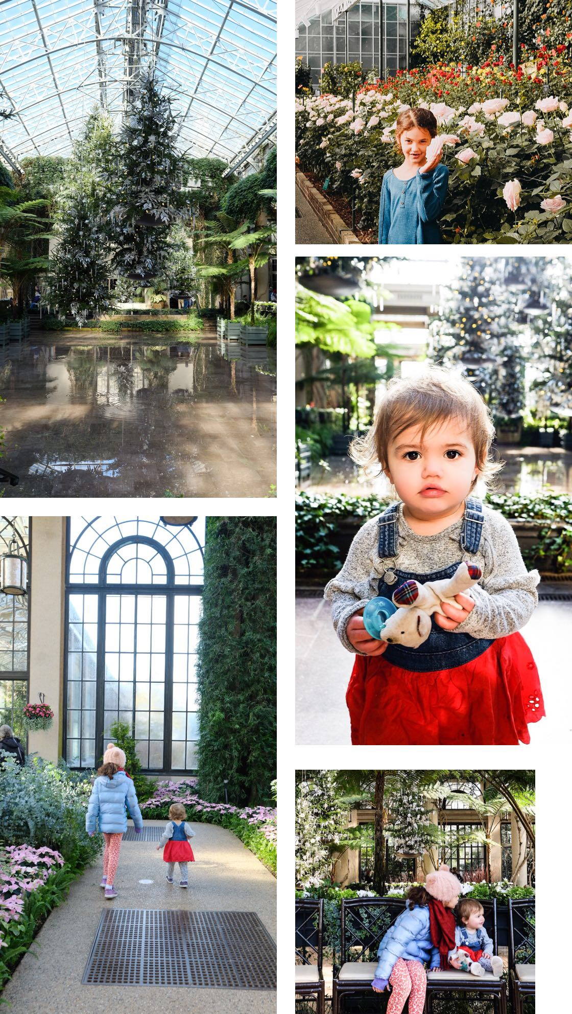 Chocolate and Lace shares a day trip from Philadelphia to Longwood Gardens.