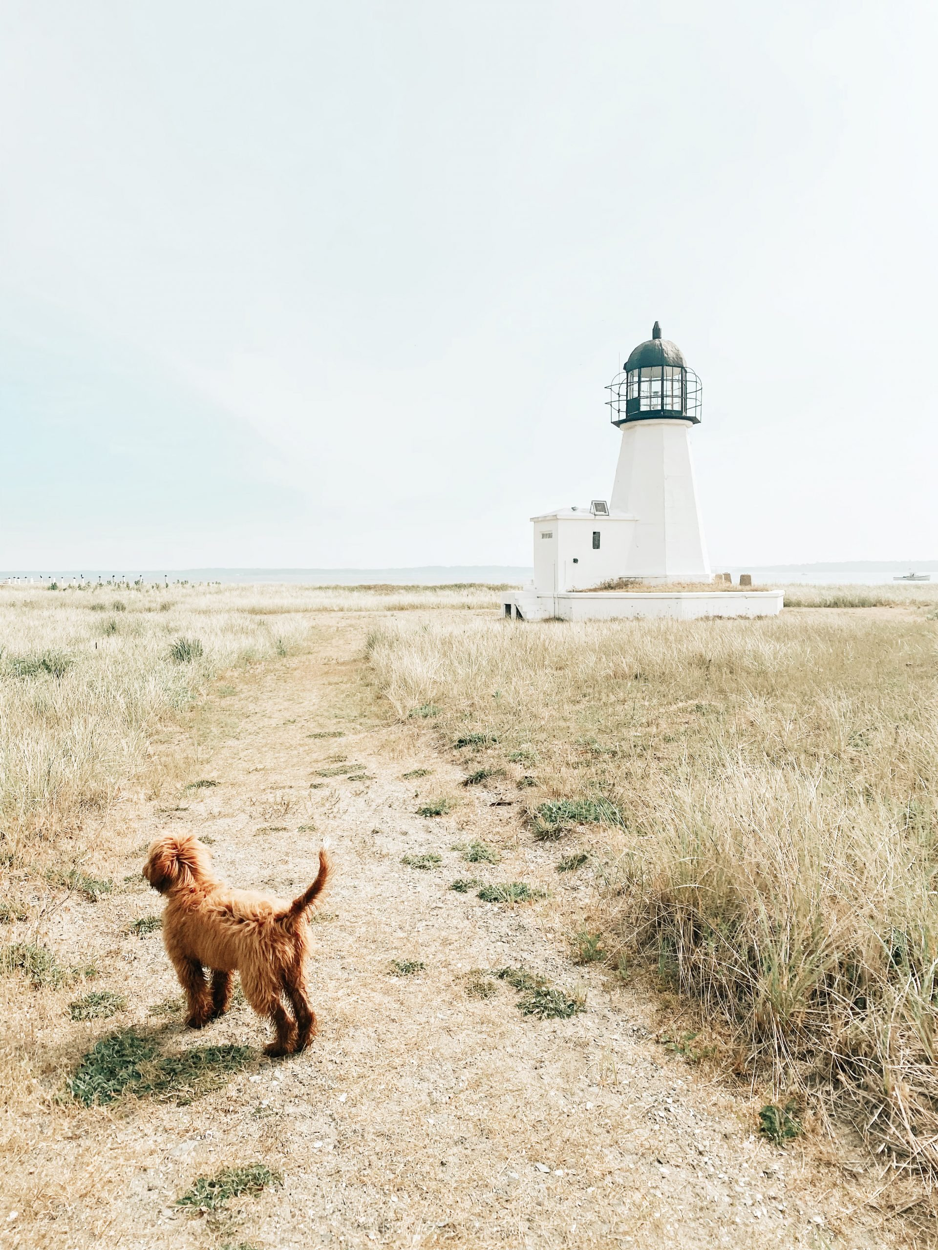 Lifestyle Blogger Chocolate and Lace shares her family trip to Prudence Island with Travel Guide.